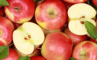 Яблоки, польза и вред для организма