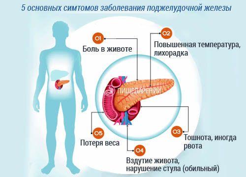 Чем быстро лечить поджелудочную железу в домашних условиях 406