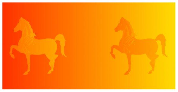 Одинаковые по цвету кони