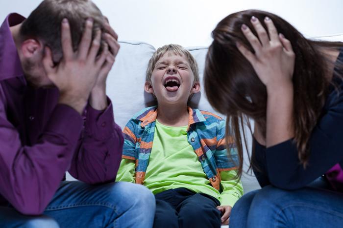 У ребёнка 3 лет истерика, что делать его родителям