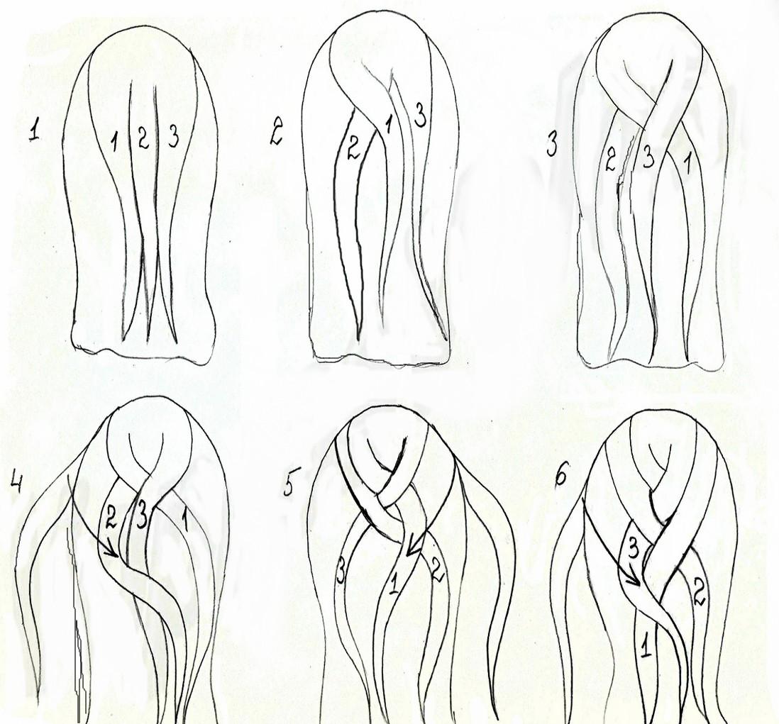 как плести косы по этапам картинки обои для стен